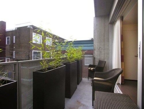 Back Patio at Vue
