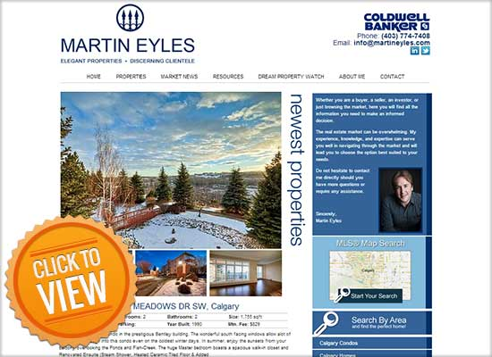 Realtor Website Sample 1